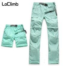 LoClimb 女性の弾性ウエストキャンプハイキングパンツ女性の夏の屋外スポーツトレッキングサイクリング旅行速乾性ズボン、 AW031