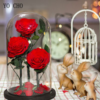 YO CHO Dried Flowers Rose Eternelle Branches In Glass Boite Valentine's Day Present Natural Real Preserved Roses Gifts for Wife