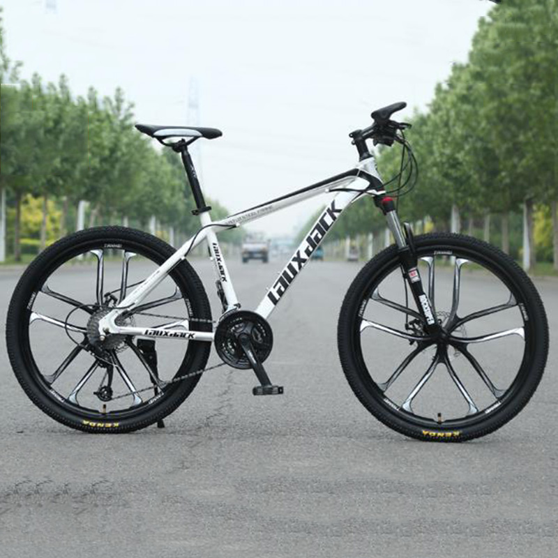Off-road Mountain Bike Double Disc Brake Bicycle Youth Racing Shift Bicycle Male And Female Students Vehicle Adult