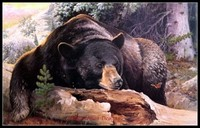 Embroidery Counted Cross Stitch Kits Needlework Crafts 14 ct DMC Color DIY Arts Handmade Decor Black Bear Country