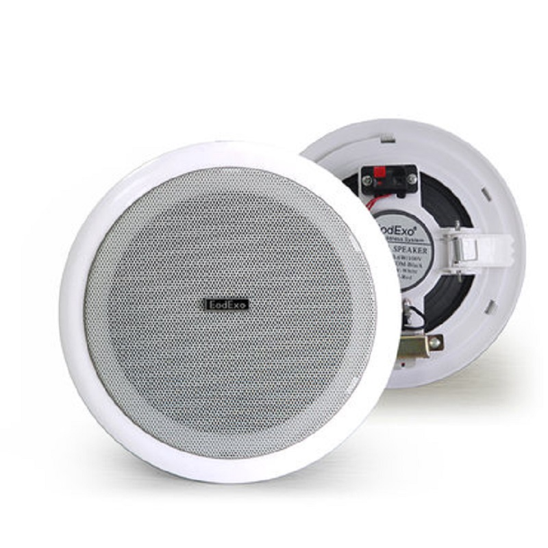 online kopen wholesale plafond stereo speakers uit china