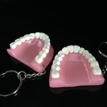 100 шт зубы модель брелок для стоматологического подарка