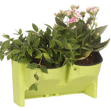 Pot Bunga Stackable Wall Planter Pot Bunga Garden Wall Hanging Vertikal Succulents Pot Tanaman Bonsai Pot Dekorasi Rumah Grosir(China)
