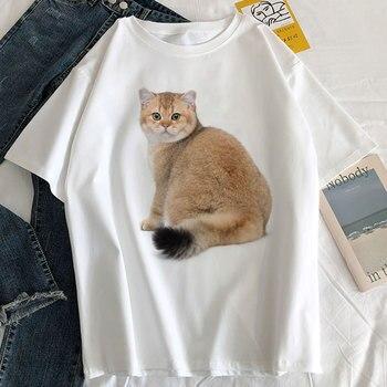 2019 Summer Novelty T Shirt Women Harajuku Kawaii Cute Style Nice Cat Print T-shirt New Short Sleeve Tops Size For Lady Girl