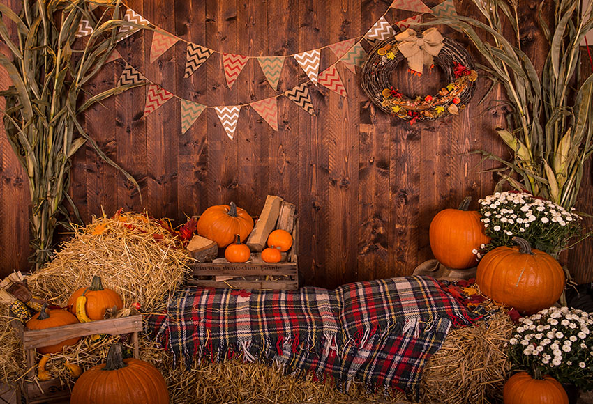 Halloween Digital Backdrop Fall Digital Background Pumpkin Backdrop Halloween Background Pumpkin House Fall Backdrop Background Aliexpress