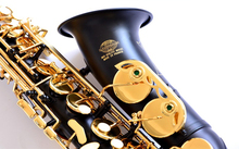 France Lehmann SAS-872 E flat alto saxophone music instruments high quality black pearl free shipping