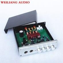 WEILIANG AUDIO-miniamplificador de potencia digital TPA3116 2,0, Clase D, con salida máxima de 100W x 2, PARA karaoke