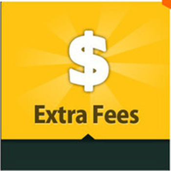 Pay More Extra Shipping Fee image