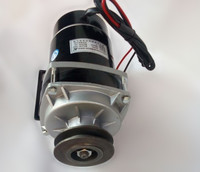 650w 24V / 36v / 48V belt pulley gear motor ,brush motor electric tricycle motor , DC gear brushed motor, MY1020ZXF
