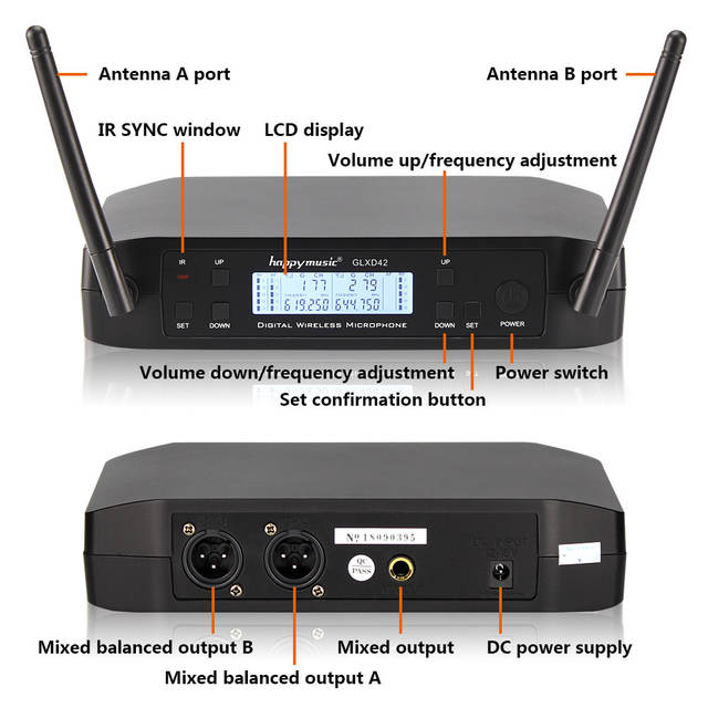 Dual Wireless Microphone Set