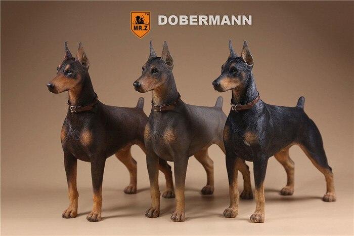 Doberman Dogs Action