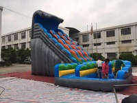 (China Guangzhou) manufacturers selling inflatable slides,inflatable pool slide, CHA 219