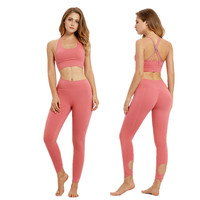 Professional Women Sports Suit Yoga Sets 2 Pcs Women Tracksuits Fitness Running Sportswear Female Slimming Workout Gym Clothing