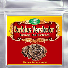цена на 100gram (3.52oz)  Mushroom Coriolus Versicolor Extract 30% Polysaccharides Powder free shipping
