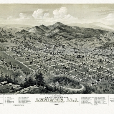 Historic Map of Anniston Alabama 1888 Calhoun County Poster Print (24 x 36)