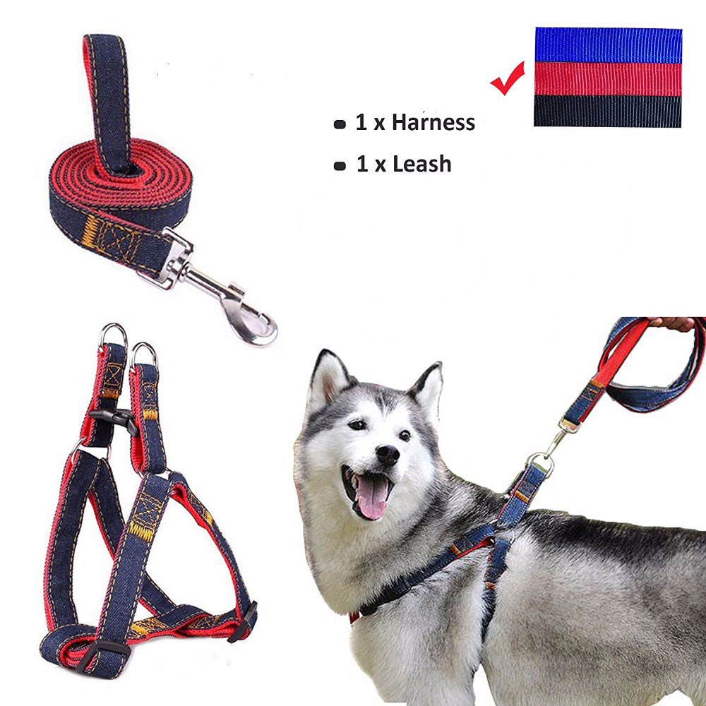 Cowboy Collars For Dogs