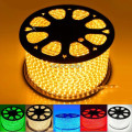 110V 220V led strip 5050 waterproof flexible light warm white blue red green yellow power plug 100m/Lot