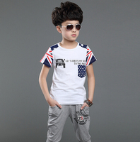 Bosudhsou Hot selling Summer Clothing Set Child Boys Girls Clothing Kids Clothes Children Sport Suits 5 14 years old Bos.WT 3