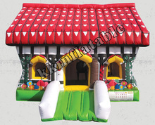 Mini Inflatable House Bouncer For Kids/Dream House Bouncing Castles