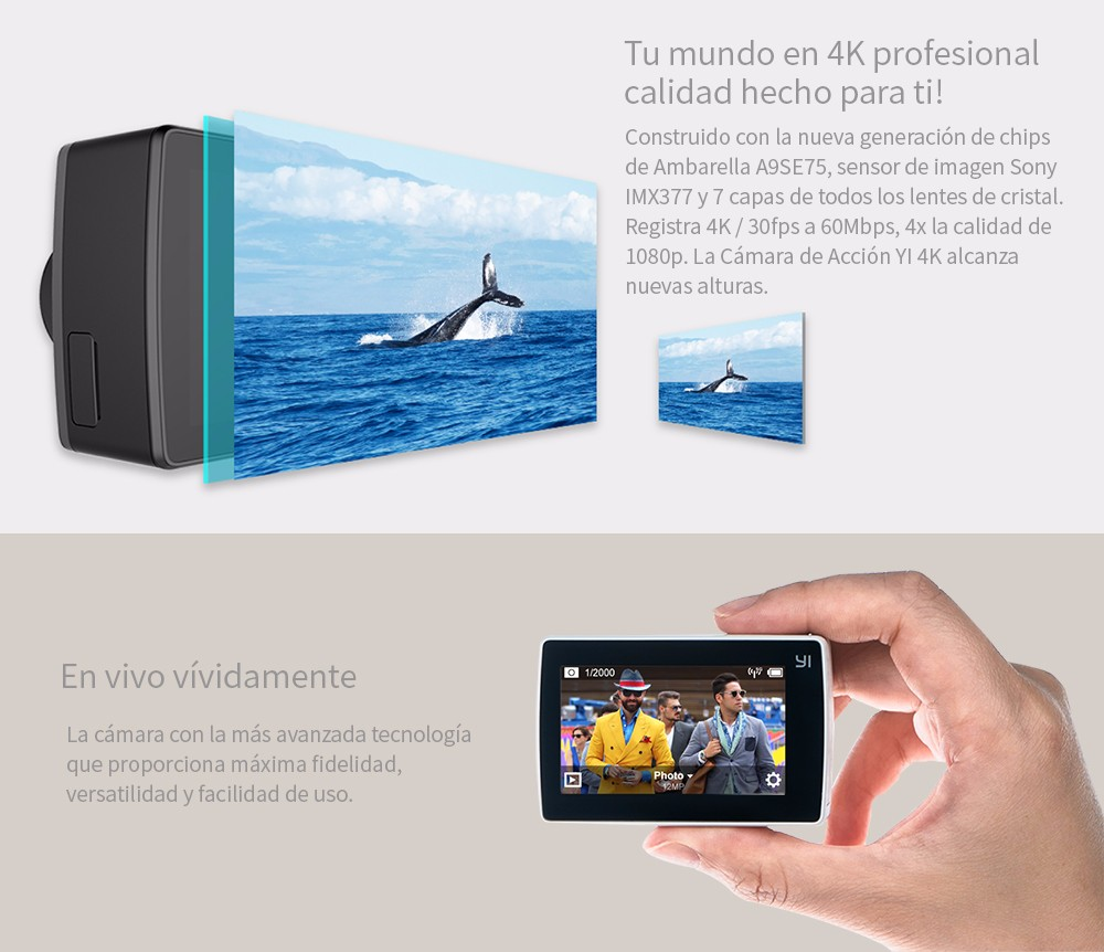 """Acción A9SE75 """"LCD Dollar 2"""