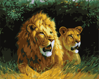Modern Style Animal Lion Frameless Picture On Wall DIY Painting By Numbers Coloring By Numbers Gift