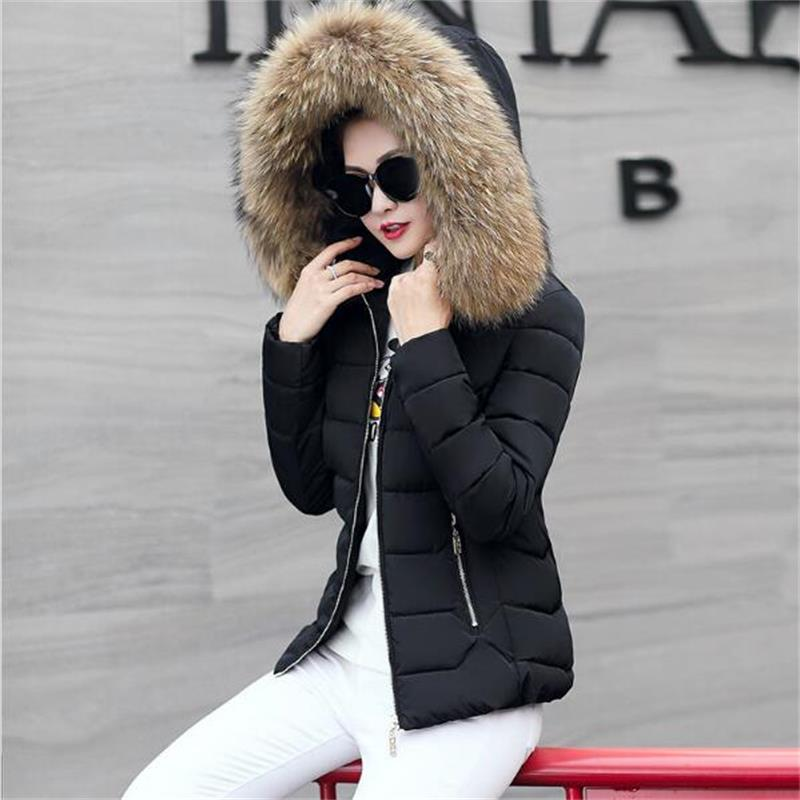 2018 New Black winter jacket women elegant ultra large fur collar down cotton-padded jacket women's plus size winter coat parka gkfnmt winter jacket women 2017 fur collar hooded parka coat women cotton padded thicken warm long jacket female plus size 5xl