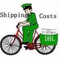 DHL транспортные расходы/расходы