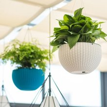 Innovative Plastic Hanging Baskets