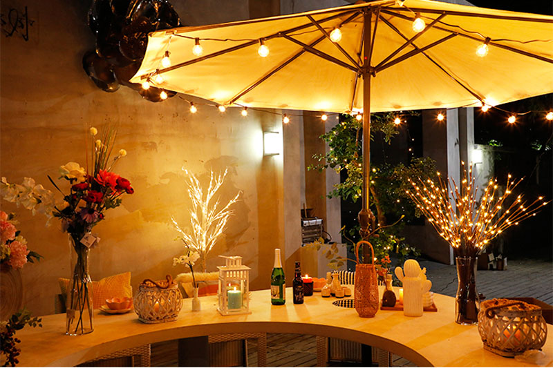 2018 New Modern Branch Lamp Floral Light 20LED AA Battery Powered Willow Branch Fairy Light Vase Coffe Bar Wedding Holiday Decor (3)