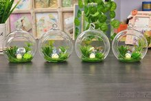 8pcs 6/8/10cm Cute Hot Transparent Glass Globes With 1 Hole Hanging Terrarium Vase Party Wedding Home Decoration New Year