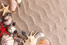 SHENGYONGBAO Vinyl Custom Photography Backdrops Prop Scenic sea beach Theme Photo Studio Background 18012-34