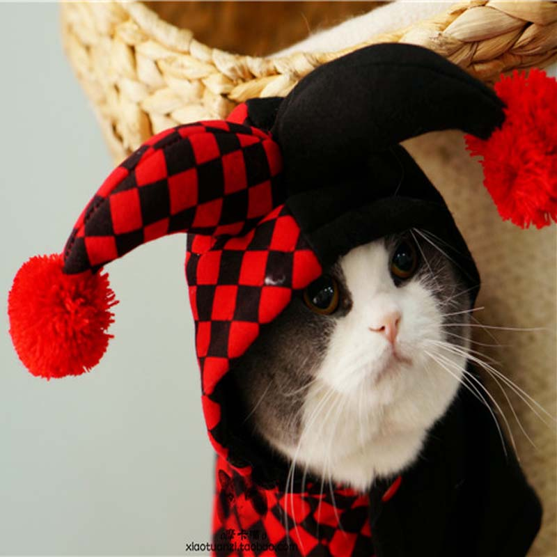 Funny Halloween pet cat dog Clown costume cosplay clothes winter warm small dog puppy poodle yorkie jacket coat clothing for dog