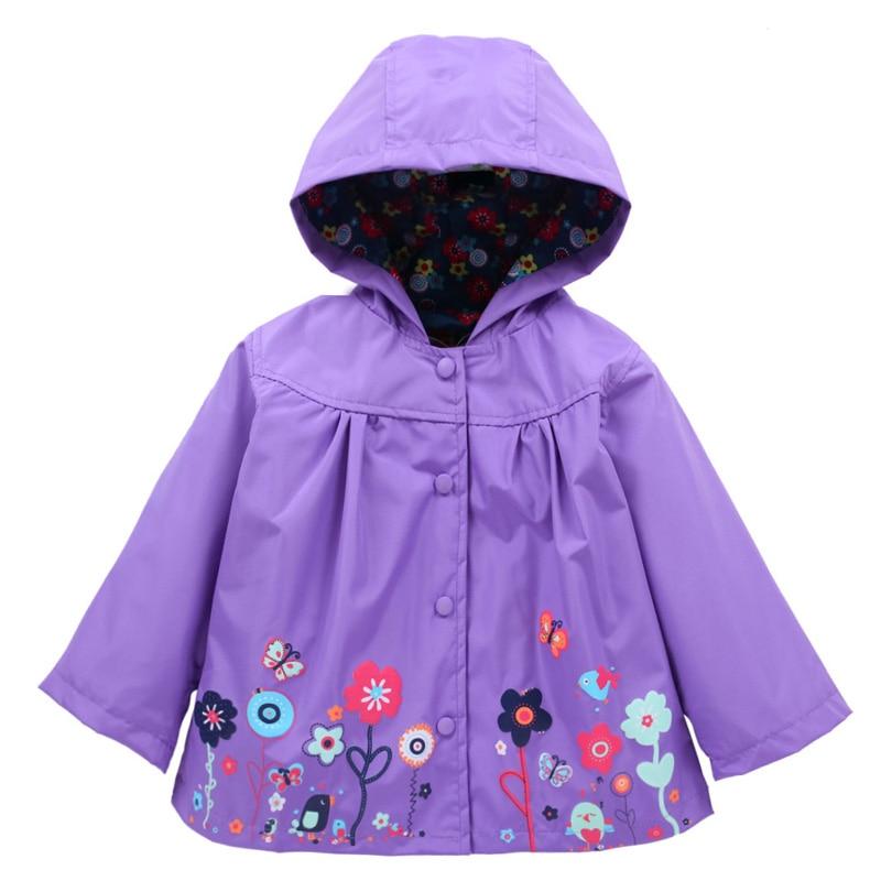 C004 purple (1)
