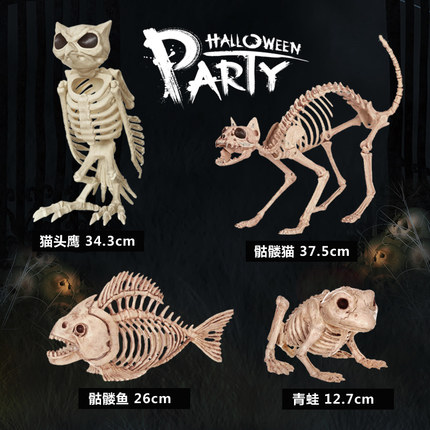 Skeleton Cat Frog fish Owl 100% Plastic Animal Skeleton ...