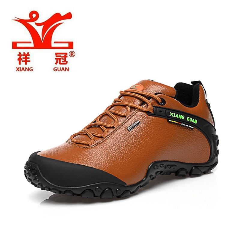 Low Hiking Shoe Reviews
