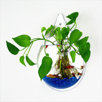 Home Office Decoration Acrylic Water Drop Transparent Wall Hanging Flower Pot Flower Planters Bubble Fish Tank