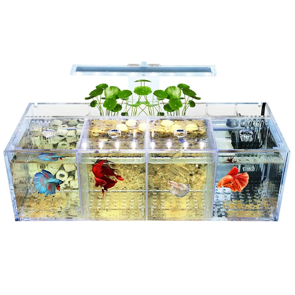 Pet Betta aquarium acrylique Isolation petit réservoir de poisson pompe à eau libre filtre seau réservoir de poisson