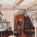 2016 New 30 Meters Transparent Plastic Resin Beads Curtain Window Door Wedding Backdrop 058WG