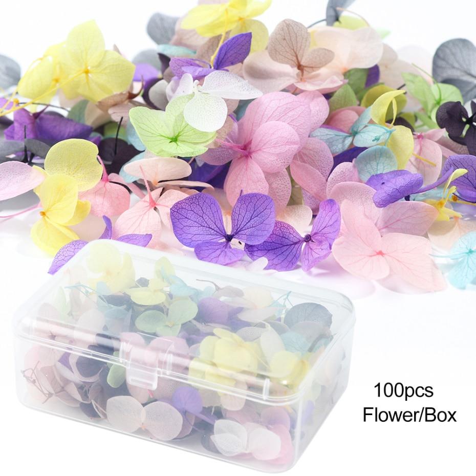 100pcs Box