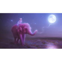 Full Square Drill 5D DIY girl elephant moon balloon night diamond painting Cross Stitch 3D Embroidery Kits home decor H39 full square drill 5d diy seaside volcano moon diamond painting cross stitch 3d embroidery kits h118