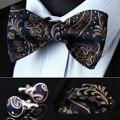 Bzp11v синий браун пейсли мужчины самостоятельная галстук-бабочку платок запонки комплект