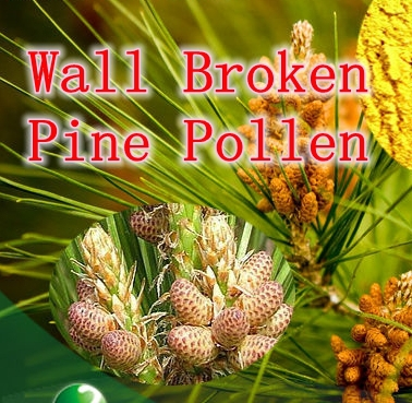 ФОТО Hotsale 1pack Cell Wall Broken Pine Pollen 400mg X 300caps Anti-aging free shipping