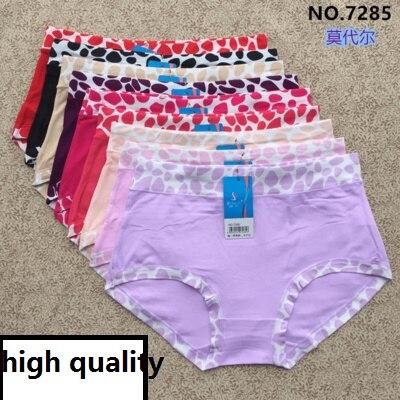 Big Size Briefs Panties 2XL Bamboo Panties Large Underwear Briefs Ladies Woman Underwear Women Underwear Panties 9colors