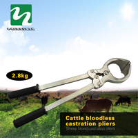 stainless steel ram cow bloodless castration castrated male animals pliers to use tool for quality assurance for sheep cattle