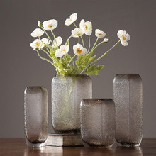 Stylish and simple American Transparent Vase Creative Living Room Glass Hydroponic Home Decoration