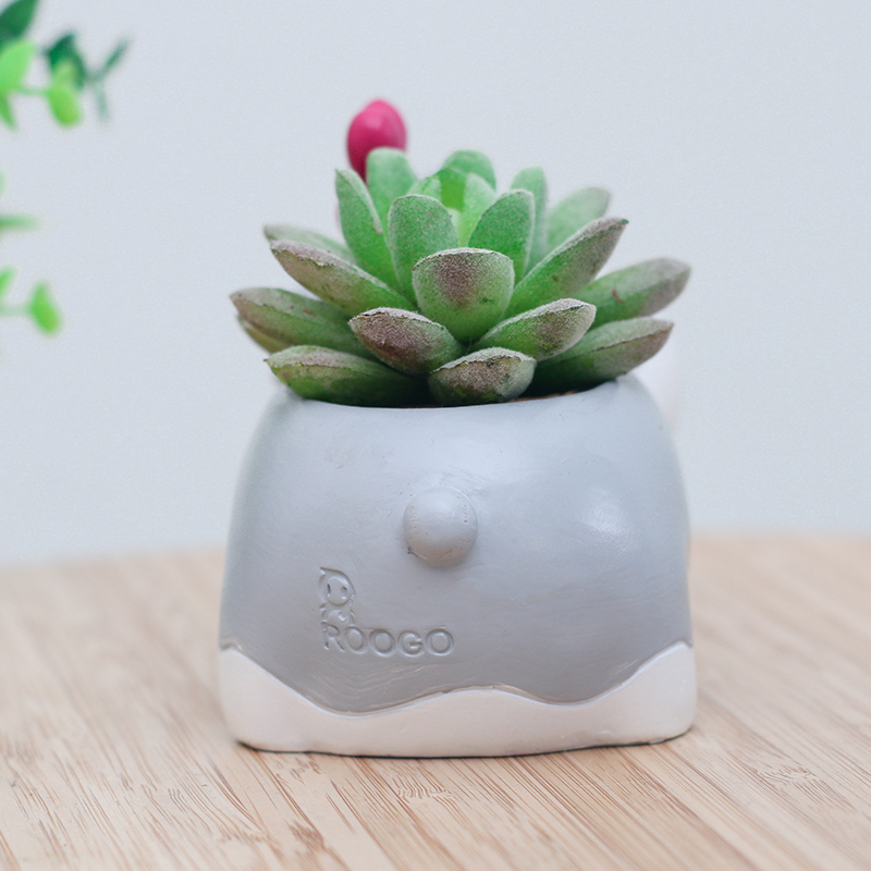 Roogo Decorative Schnauzer Dog Pot Animal Shape Resin Flowerpot Garden Decor Pots Succulent Plants Holder Gift Ideas For Him In Flower Planters From