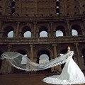 TS1006lace edge long veil bride bridal veils voile mariage veil 5 meter schleier bridal veil ivory velo de novia voile de mariee