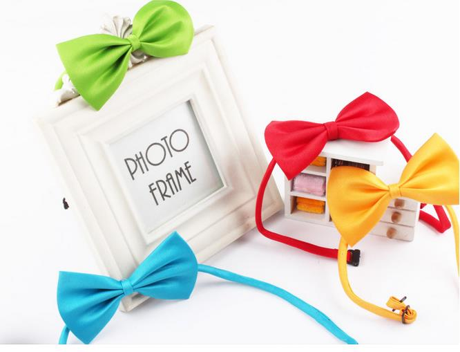 200pc lot 2019 New Arrival Hot sale Wholesale Fashion Colorful Pet Dog Teddy Tie Bow can