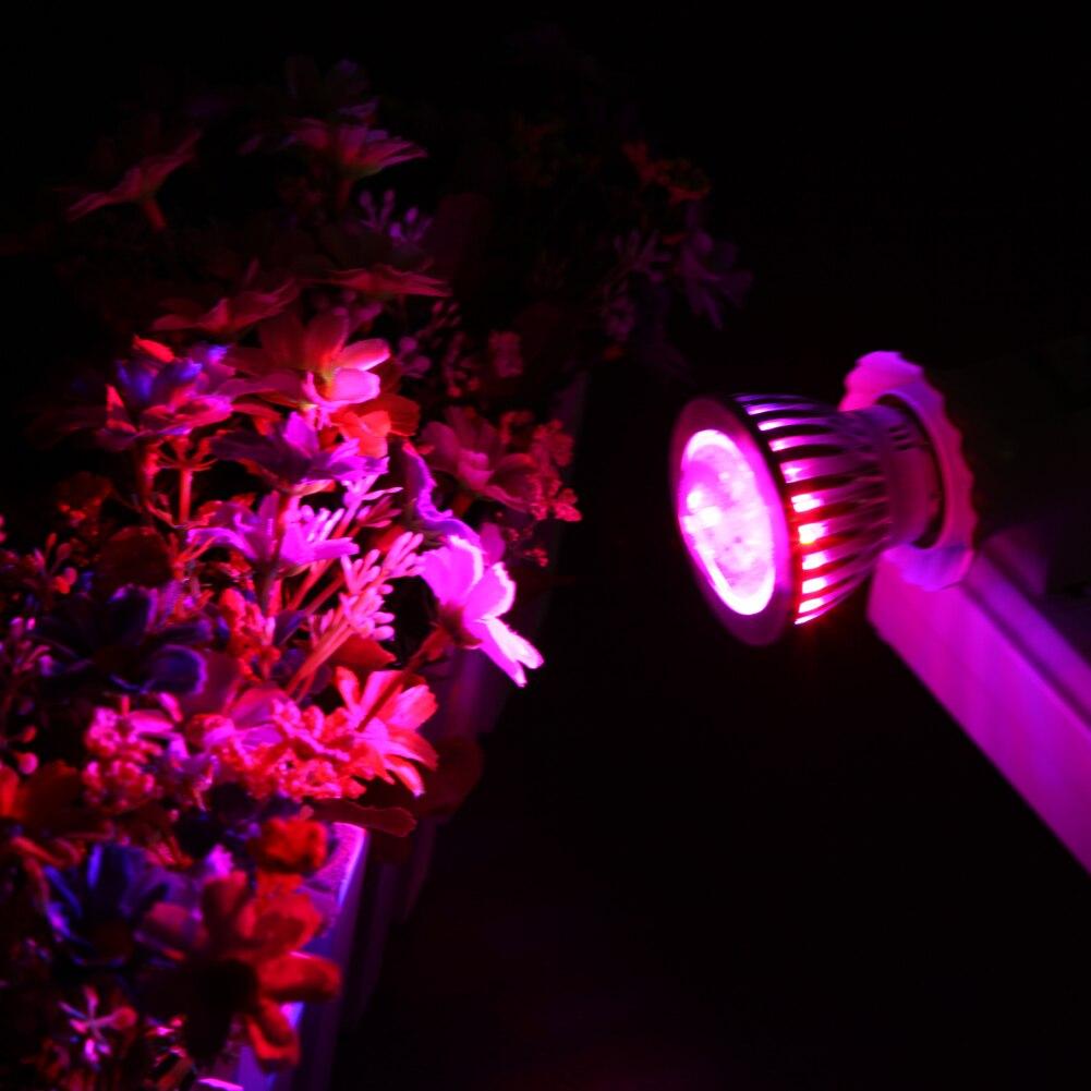 D1u # выпуклой E27 85-265 В 4Red 2 синий 6 светодиодов светать цветок система гидропоники завода светать
