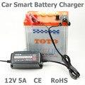 Foxsur 12В 5А автомобильное зарядное устройство для ремонта и демонтажа смарт-зарядное устройство для AGM гелевых влажных аккумуляторов EU/AU/UK/US ...